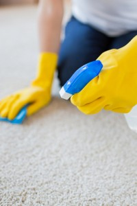 Carpet Rug Cleaning Services